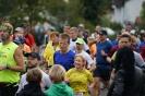 Seenlandmarathon 2018 - Die Läufe